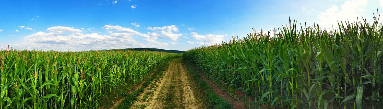 landwirtschaft - Wir über uns