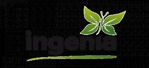 Ingenia Dienstleistung Beratung Management GmbH