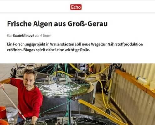 Algen aus Groß-Gerau auf www.echo-online.de
